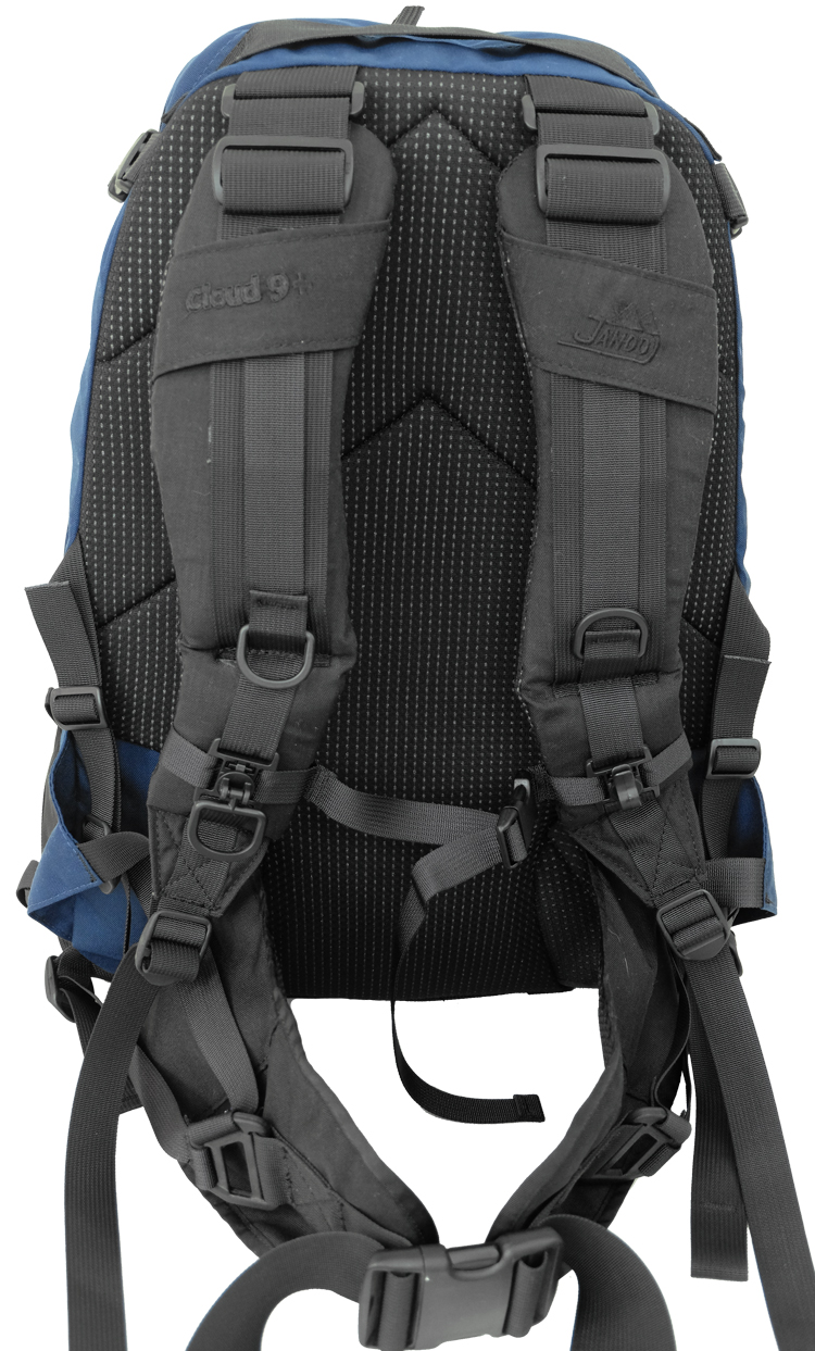 Back View of Lite Backpack